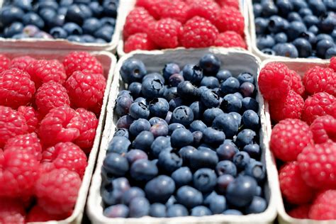 Free picture: raspberry, fruit, blueberry, blackberry ...