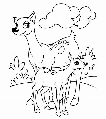 Coloring Animals Pages Printable Momjunction Animal Toddler