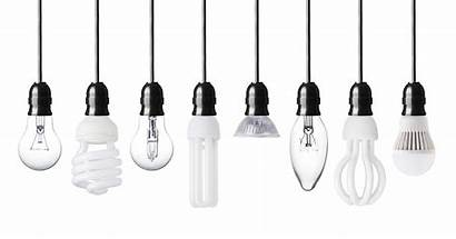 Bulb Right Choosing Houselogic