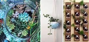 Bonsai Im Glas : mehr als nur deko 13 kreative ideen f r mehr gr n in der wohnung ~ Eleganceandgraceweddings.com Haus und Dekorationen