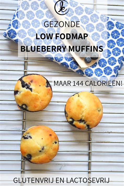 Low FODMAP blueberry muffins met citroen - Een gezonde ...
