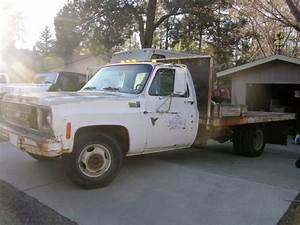 1980 Chevrolet Truck For Sale