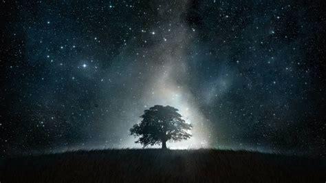 배경 화면 나무 등 공간 잔디 하늘 별 언덕 은하수 분위기 나선 은하 천문학