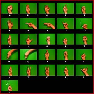 Chicken Soup For Your Soul: The Benefits of Sign Language