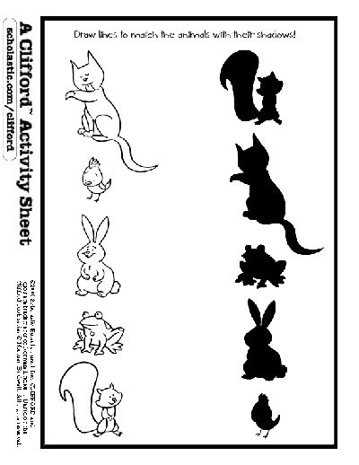 animal shadow match animal activities activities and
