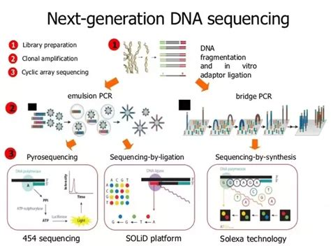 Illumina Solexa Sequencing How Has Sequencing Technology Advanced Since The