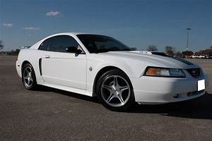 FS: 1999 Mustang GT Limited Edition - MustangForums.com
