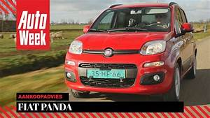 Occasions Fiat Panda : fiat panda occasion aankoopadvies youtube ~ Gottalentnigeria.com Avis de Voitures