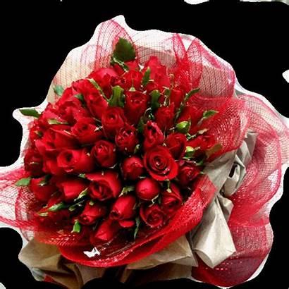 Flores Gifs Encontradas Hermosos Mirta Flowers Birthday