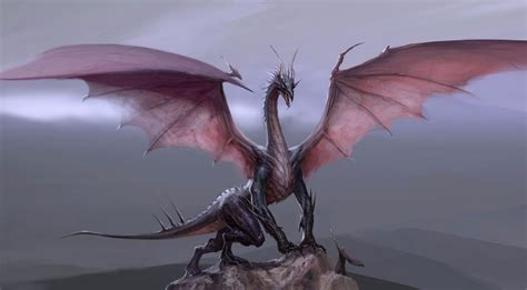 el significado de sonar  dragones la guia hacia la