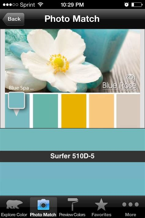 behr paint color in surfer color to the far right is