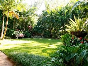 Tropical garden Coorparoo – Boss Gardenscapes