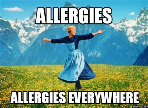 Allergy Meme - 40 best allergies suck images on pinterest funny stuff allergies funny and funny memes