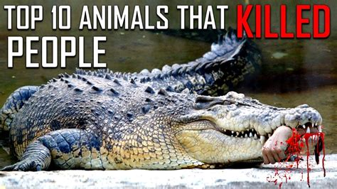 kill humans animal