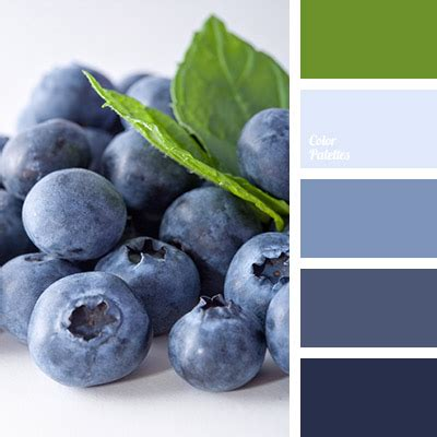 what color are blueberries color of blueberries color palette ideas