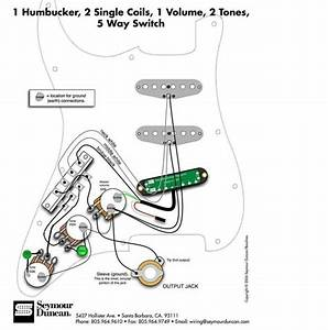 Wiring Diagram B Fender Hss Strat