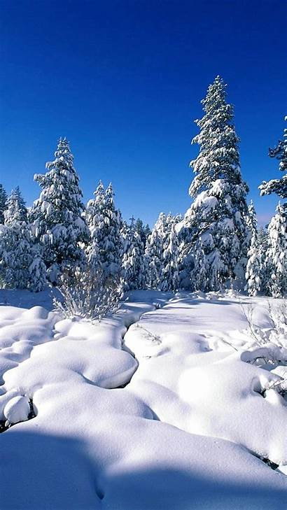 Winter Iphone Snow Wallpapers Themed Sunlight Shiny