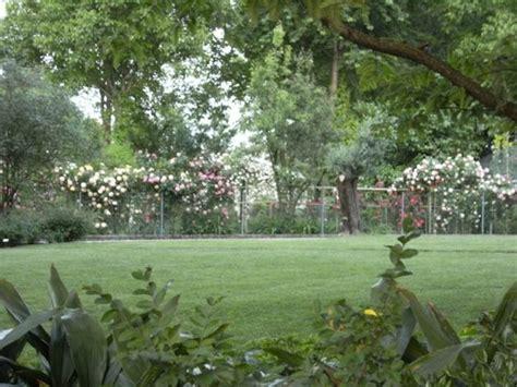 Il Curriculum Verde Di Loris  Amici In Giardino