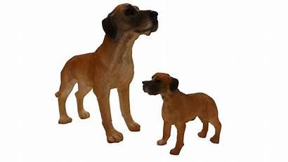 Dog Breeds Ornaments Different Joblot Packs Variety