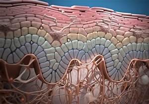 Как использовать фракцию асд в лечении псориаза