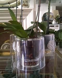 Cache Pot Orchidée : recherche cache pot con u pour orchid e int rieure questions r ponses forums ~ Teatrodelosmanantiales.com Idées de Décoration