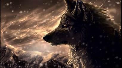 Wolf Wallpapers Pixelstalk