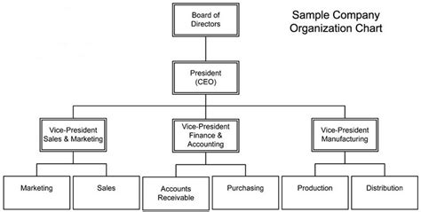 Company Ownership Chart Template by Free Company Structure Chart Template Excel Project