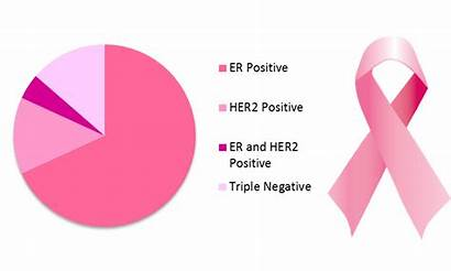 Types Cancer Breast Her2 Positive Negative Triple