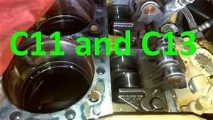 Cat C13 And C11 Engines  Facts  Walk Around  Sensor