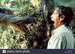 Jonathan Hyde & Giant Snake Anaconda (1997 Stock Photo ...