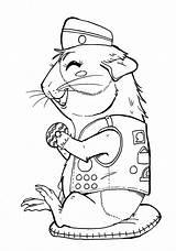 Scout Coloring Brownie Cookie Pig Ausmalbilder Scouts Cookies Guinea Meerschweinchen Gerbil Clipart Daisy Printable Hamsters Activity Malvorlagen Hamster Konabeun Azcoloring sketch template