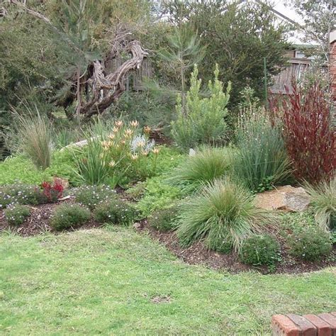 australian garden design ideas 17 best images about courtyard garden on pinterest