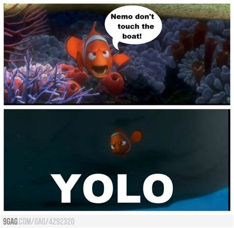 Nemo Meme - i cannot believe i just pinned a yolo meme but i got a kick out of it nemo pinterest