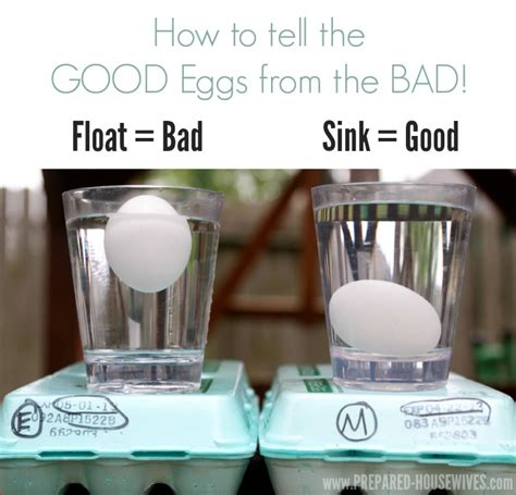Bad Eggs Do They Float Or Sink by Preserving Eggs With Mineral One Year Later