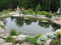 pond shapes and design Natural Swimming Pools Design Ideas, Inspirations, Photos