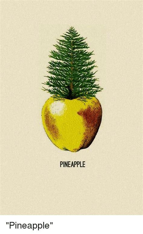 Pineapple Memes - funny pineapple memes of 2016 on sizzle apple