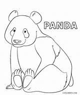 Panda Coloring Pages Printable Bear sketch template