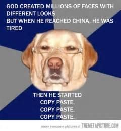 Dog in Funny Glasses Memes