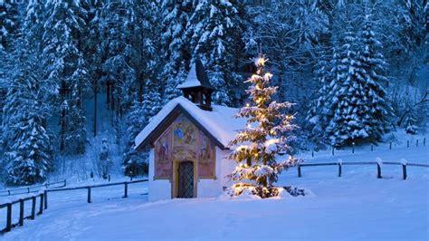 bauers weihnachtsbaum das sagen die bauernregeln zur wei 223 en weihnacht 2014 wetter de