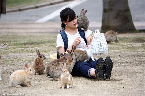 omg   rabbit island  japan