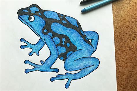 posion dart frog  printable templates coloring