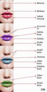 Piercing en el labio, zonas a perforar y el nombre que reciben