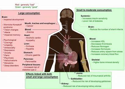 Effects Term Alcohol Addiction Ethanol Wikipedia Source