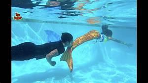 Mermaid Vs Shark Pie Face Sky High  Family Game