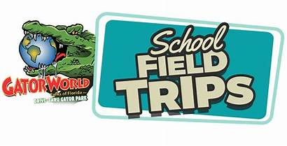 Field Trips Park Gator Thru Drive Florida