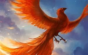 Fantasy Phoenix Wallpaper 7 Cool Wallpaper - Hivewallpaper.com