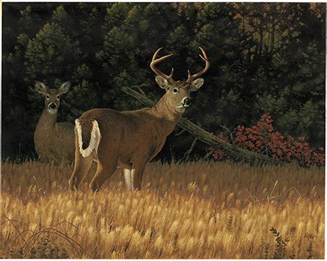 kentucky department  fish wildlife rick hill paintings