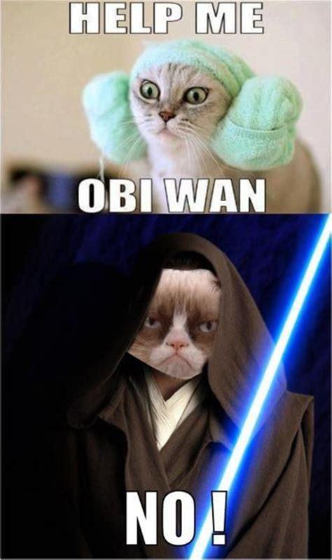 Star Wars Cat Meme - grumpy cat star wars help me obi wan no dump a day