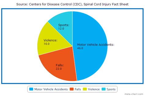 What Causes Spinal Cord Injury? Spinal Cord Injury