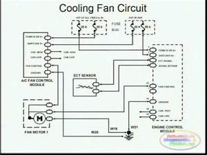Cooling Fans Wiring Diagram YouTube